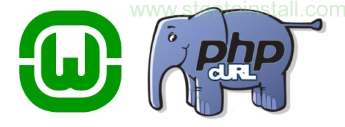 PHP cURL is not working in WAMP server on windows 64 bit